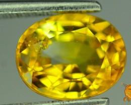 1.6 ct Golden Sapphire ~ Sri Lanka