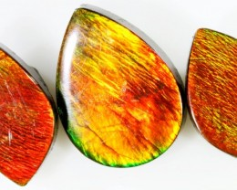 31.3 CTS AMMOLITE PARCEL PPP 628