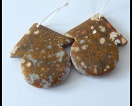 61Ct Natural Ocean Jasper Earring Beads(B1804362)
