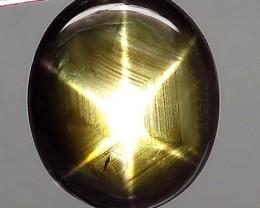 4.93 Carat Natural Thailand Black Star Sapphire