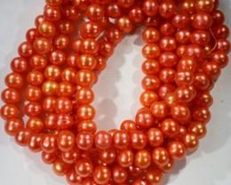 405.90 cts Three Orange Semi Round Pearl strands  GOGO 1136