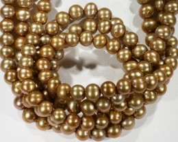 375.65 cts Three Golden Semi Round Pearl strands  GOGO 1140