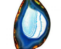 Genuine 224.50 Cts Slice Agate