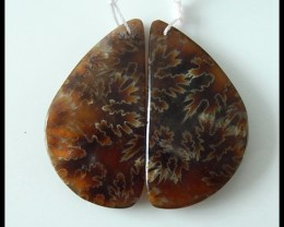 48Ct Natural Ammonite Gemstone Earring Beads Pair(B1802)