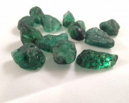 Lot of 12 rough Emerald - 45 Grams - Zambia