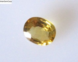 0.59cts Natural Australian Golden/Yellow Sapphire Oval Cut