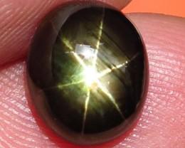 5.66 Carat Thailand Black Star Sapphire - Gorgeous