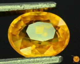 Natural Yellow Sapphire ~ Sri Lanka
