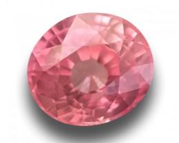 1.14 Carats | Natural Padparadscha | Loose Gemstone | Certified | Sri Lanka