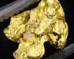 0.8 Grams  Kalgoorlie Gold Nugget, Australia LGN 1494