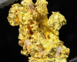 0.7 Grams  Kalgoorlie Gold Nugget, Australia LGN 1505