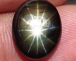 5.52 Carat 12 Ray Star Sapphire - Gorgeous