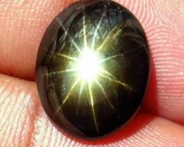9.18 Carat Thailand 12 Star Black Sapphire - Gorgeous