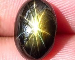 4.70 Carat Thailand Star Sapphire - Gorgeous