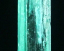 49.80 Cts WORLD ONLY 1 Hiddenite Kunzite Crystal