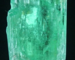 34.35 Cts WORLD ONLY 1 Green Spodumene Crystal