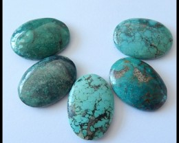 5 PCS Turquoise Gemstone Cabochons Set For Necklace Design,90Ct