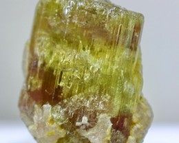 62.30 ct~100% Natural Unheated New Find Shigar Green Beryl Crystal(Never Se