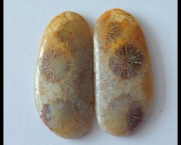 21.5Ct Natural Coral Gemstone Cabochon Pair(C0108)