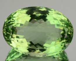 Biggy 49.61 Cts Natural Green Amethyst/Prasiolite Oval Cut Brazil Gem