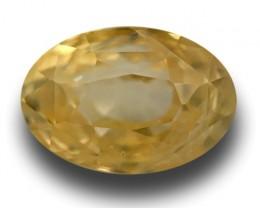 2.45 Carats | Natural Unheated Yellow Sapphire | Loose Gemstone | Sri Lanka