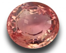 GIA Certified Natural Padparadscha | Loose Gemstones |Sri Lanka - New