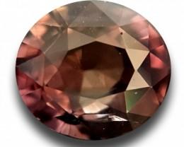 1.65 Carats | Natural Multi Color Sapphire | Loose Gemstone | Sri Lanka - N