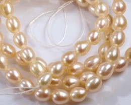 65.5 CTS PEARL BEADS DRILLED  NP-2039