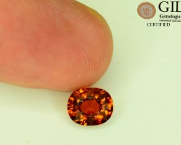 GiL Certified 1.69 ct Zircon Brown Color Cambodia Awesome Luster S.1