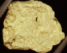 0.90 Grams Kalgoorlie Gold Nugget, Australia LGN 1527