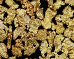 45.3 Grams Parcel Kalgoorlie Gold Nuggets, Australia LGN 1546