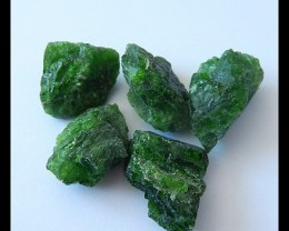 5 PCS Natural Diopaste Gemstone Rough Parcel,NR~88.5CT