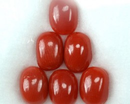 UNHEATED 5.11 Cts Natural Italian Red Coral (7x5 mm) 6 Pcs Parcel