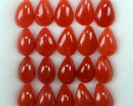 UNHEATED 5.06 Cts Natural Italian Red Coral (5x3 mm) 20 Pcs Parcel