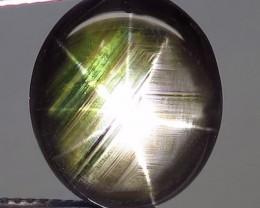 1$NR - 12.61 Carat Thailand Black Star Sapphire - Gorgeous