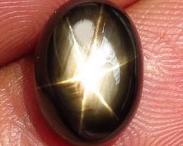 7.60 Carat Thailand Black Star Sapphire