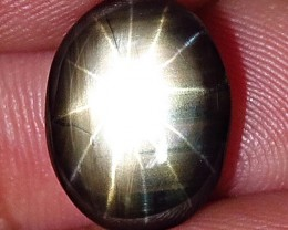 4.43 Carat 12 Ray Thailand Black Star Sapphire - Gorgeous