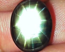 4.43 Carat 12 Ray Thailand Black Star Sapphire - Gorgeous