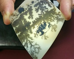 Dendritic Agate 99ct shield shape cabochon