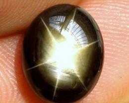 7.50 Carat Black Star Sapphire - Impressive
