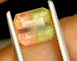 1.8 CTS WATERMELON TOURMALINE PG-2003