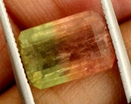 4.3 CTS WATERMELON TOURMALINE PG-2014