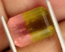 4.4 CTS WATERMELON TOURMALINE PG-2016