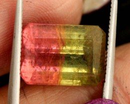7.8 CTS WATERMELON TOURMALINE PG-2020
