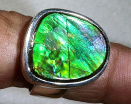 RING SIZE 7  BRIGHT AMMOLITE SILVER RING SG-2419