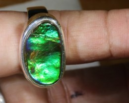 RING SIZE 8 BRIGHT AMMOLITE SILVER RING SG-2421
