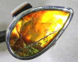 RING SIZE 7.5  BRIGHT AMMOLITE SILVER RING SG-2422