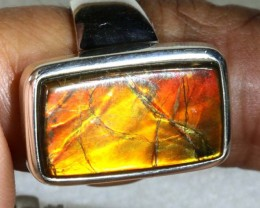 RING SIZE 7.5  BRIGHT AMMOLITE SILVER RING SG-2423