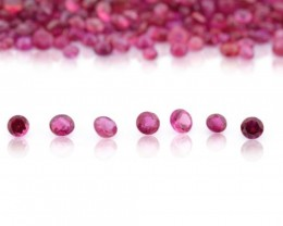 19.48 cts 455 st Round Ruby