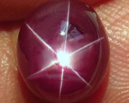 5.77 Carat Top Star Ruby - Gorgeous